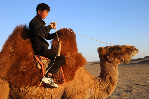 Some 9-year-olds play playstation 4 all day, others heard the family goats by camel