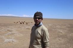 Papa and camels