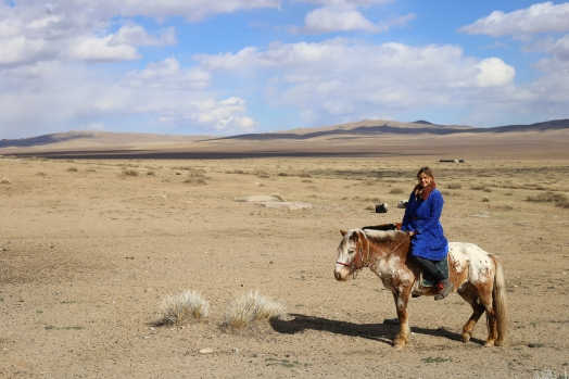 Mongolian horses are not very large.