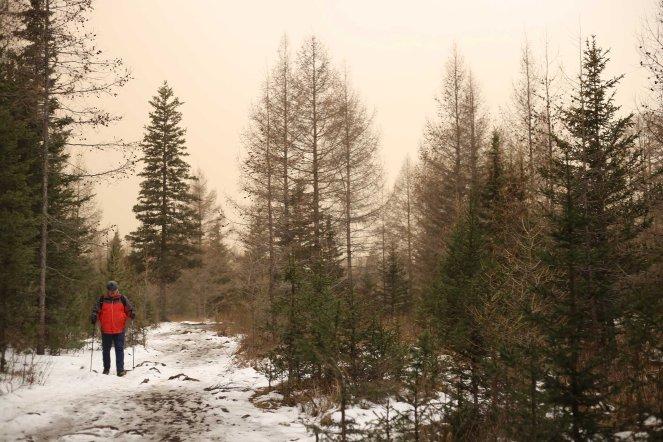 Bogd Khaan Uul hiker in snow