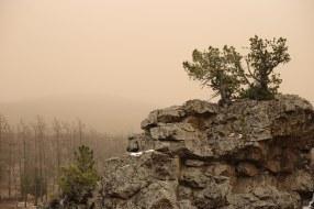 Bogd Khan Uul sand storm