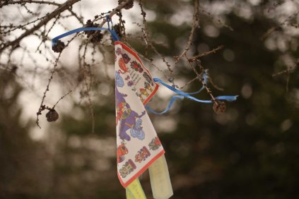 Mongolia trail marking in the trees
